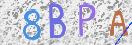 表示されている文字を、認証コード欄へ入力してください